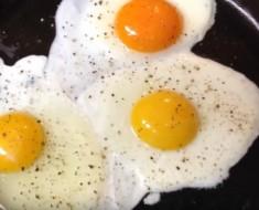 diferencias de huevos - portada