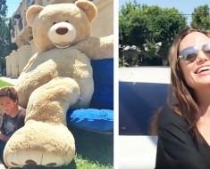 oso-comprado-por-jolie-portada