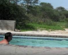 sorpresa-piscina-portada