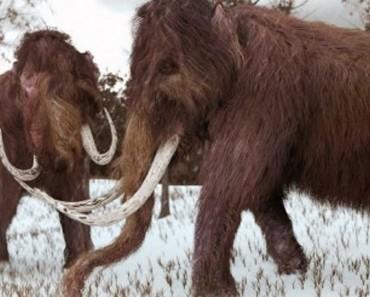 reviven mamut portada